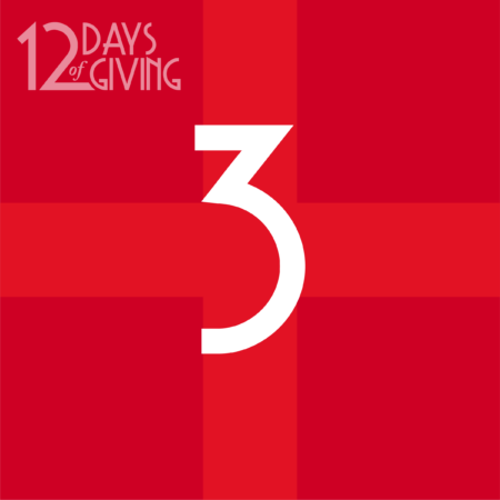 12 day of Giving-03